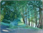 tableau paysages souillac chemin paysage lot : CHEMIN AU BORD DE L'EAU