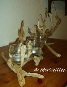 deco design autres photophore centre de table bois flottes etoile de mer : Photophore bois flottés