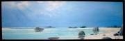 tableau marine tropiques seychelles mer cocotiers : Détente