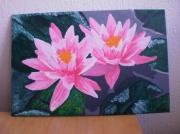 tableau fleurs nenuphars roses : Nénuphars