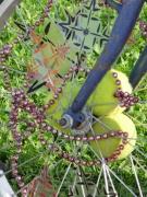 photo abstrait art free velo : Vélib