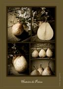 photo fruits fruit poires : Histoire de poires