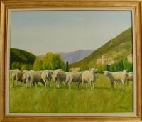 Moutons Chauvac Drôme
