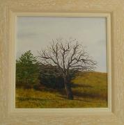 tableau paysages provence fruits arbre paysage : Poirier à l'Automne