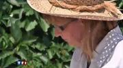 Brigitte Grange