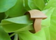 bijoux autres bague buis : Bague en bois