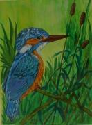 tableau animaux oiseau animeaux pecheur deco : martin pecheur