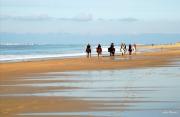 photo marine ile de re plages cavaliers : plage du petit bec