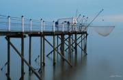 photo marine carrelets aube marine pecheries : le carrelet blanc