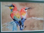 tableau animaux oiseaux : OISEAUX DU PARADIS