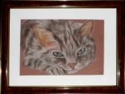 tableau animaux art animalier chat pastel : tendre regard