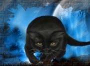 art numerique animaux chat chat noir nuit : transparence et opacitté