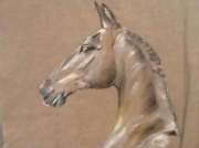 tableau animaux cheval toile lin marron : Cheval