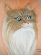 tableau animaux chat cat gatto katze : chat pastel