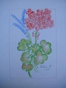 tableau fleurs fleur geranium lavande : geranium & lavande
