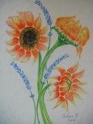 tableau fleurs aquarelle fleur lavande provence : lavande & tournesol