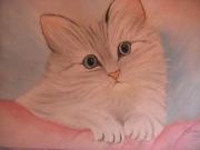 dessin animaux cat chat gatto katze : pastel chat