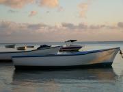 photo marine barque bateau mer : barque filet noir intérieur bleu