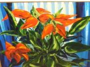 tableau fleurs fleurs poinsettia noel bouquet : Poinsettia
