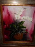 tableau fleurs orchidee fleurs bouquet pot de fleurs : Orchidée