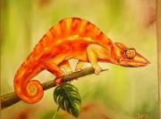tableau animaux cameleon animal : Le caméléon