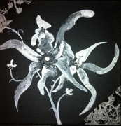 tableau fleurs fleur noir blanc lys : Noir et Blanc de Fleur 4