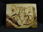 tableau animaux animaux felins portrait pigments : Ocelot