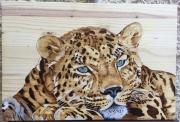 tableau animaux panthere leopard asie pyrogravure : Panthère de l'Amour