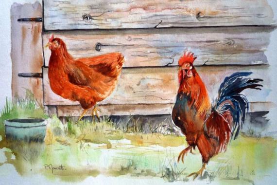 TABLEAU PEINTURE poules , coq poulailler volailles Animaux Aquarelle  - Au poulailler