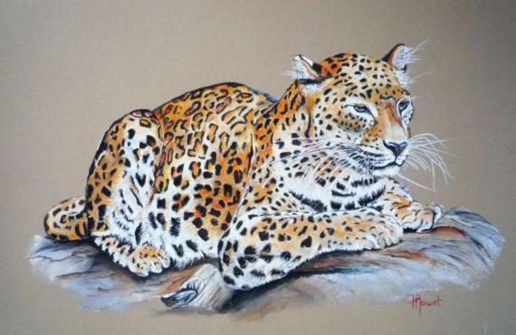 TABLEAU PEINTURE pastel leopard pastel animaux animal sauvage pastel fauves Animaux Pastel  - Léopard