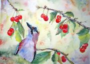 tableau fruits cerises aquarelle geai aquarelle oiseaux cerisier printemps aquarelle : Gourmandises de printemps
