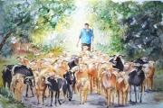 tableau scene de genre aquarelle moutons aquarelle berger aquarelle transhuman troupeau moutons : Vie campagnarde