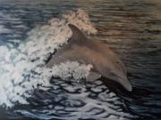 tableau marine dauphin marine eau vague : Liberté 1