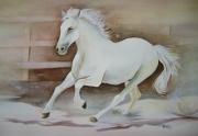 tableau animaux aquarelle chevaux aquarelle cheval aquarelle animaux nature : Au paddock