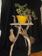 deco design abstrait bois flotte : repose plante