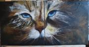 """tableau animaux chat felin animaux huile : Chat """"deux en un"""" !"""