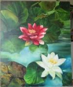 tableau fleurs : Nénuphars