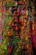 photo nature morte nature abstrait peinture : Tree art 4
