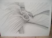 dessin fleur pot : cyclamen