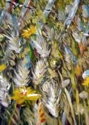 tableau fleurs herbes fleurs ganivelle salins de hyeres : fleurs sauvages des Salins d Hyèrs