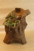 sculpture fleurs jardiniere decorartion josi rica : jardinière imitation bois