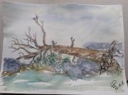 tableau paysages arbre rocher gris : arbre mort