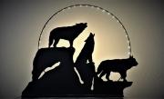deco design animaux lampe loups fait main luminaire : image 0 image 1 image 2 image 3 image 4 image 5 image 6 image 7