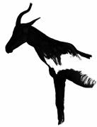 dessin animaux antilope savane sauvage afrique : antilope