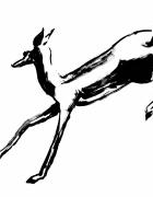 dessin animaux gazelle sauvage afrique savane : Gazelle II