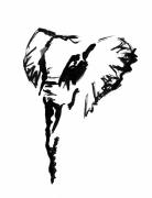 dessin animaux elephant sauvage savane afrique : Eléphant II