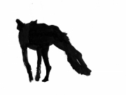 dessin animaux licaon sauvage chien afrique : Licaon IV