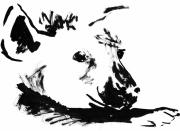 dessin animaux hyene mignon savane afrique : Hyène II