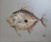 tableau animaux poisson saint pierre mer decoration : * LE SAINT PIERRE*