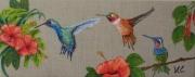 tableau animaux oiseau colibri fleur hibiscus : *COLIBRIS* (1)